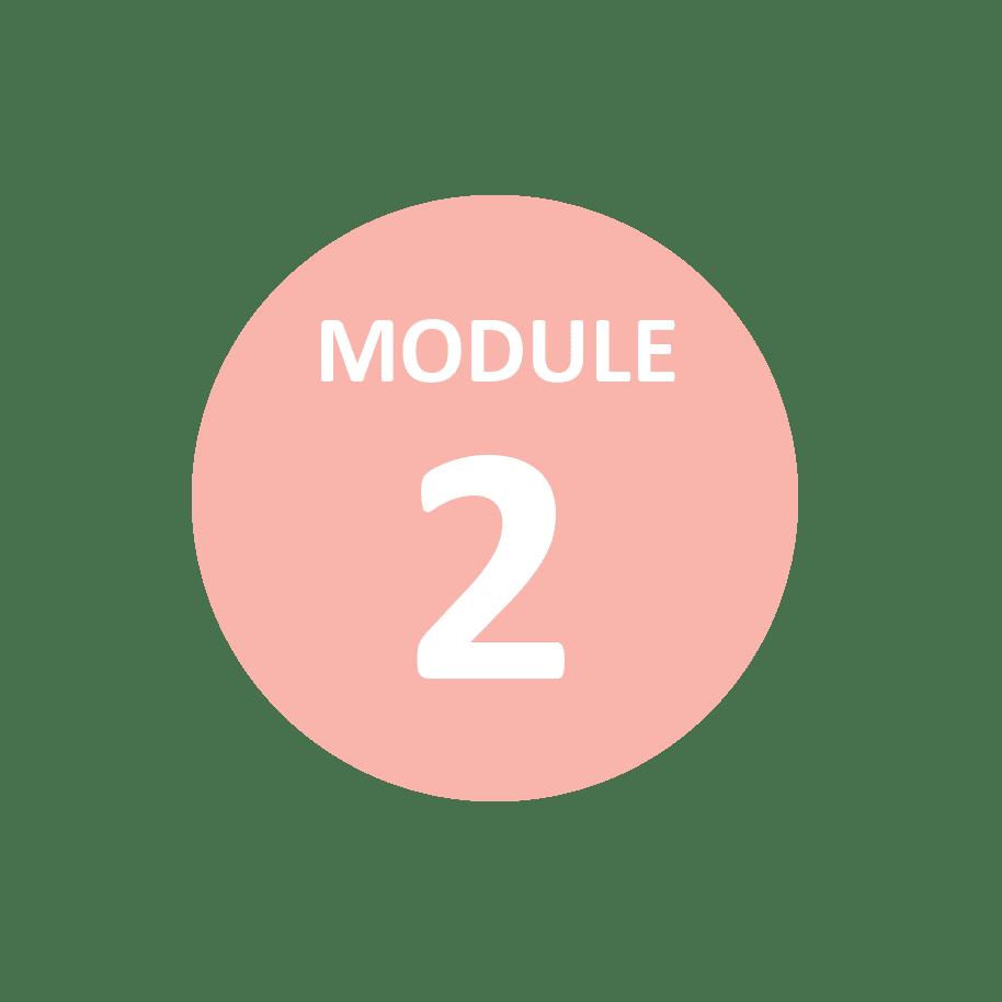 Module 2 alternativf Melbourne